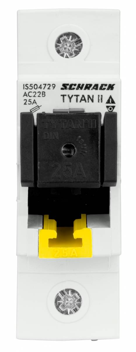 D02-Fuse switch disconnector, 1-poles, 25A fixed, complete
