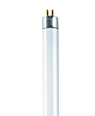 T16 W/8 G5 FLH1 Fluorescent lamps 16mm (packing unit 20)