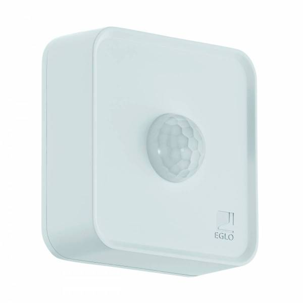Connect Sensor white, motion detector Day/Night Function