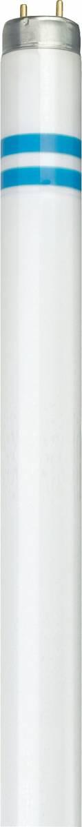 TL-D Secura 36W/840 G13 fluorescent lamp neutralwhite